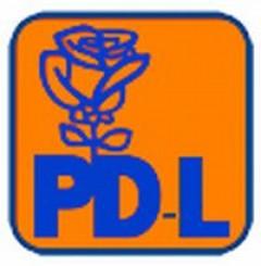 Fuziunea prin absorbtie, omoara PDL-ul!