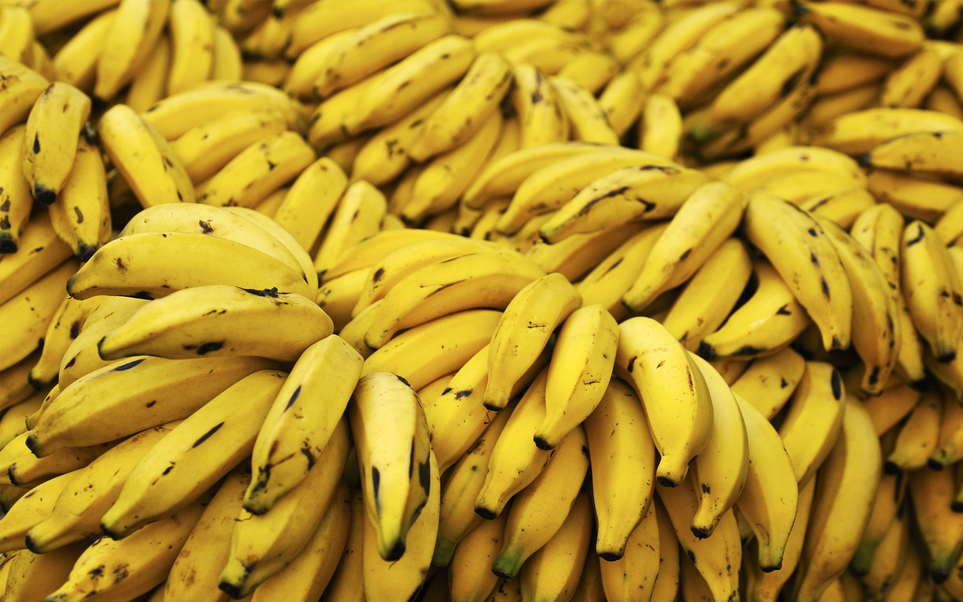 Banane modificate genetic, bogate in vitamina A