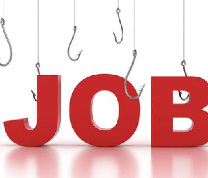 600 de joburi pentru absolventi